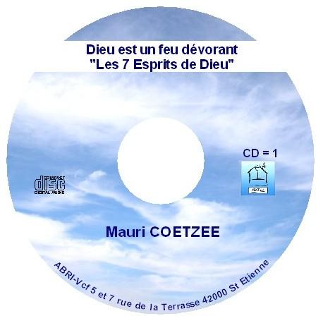 Dieu est un feu dévorant - Mauri Coetzee